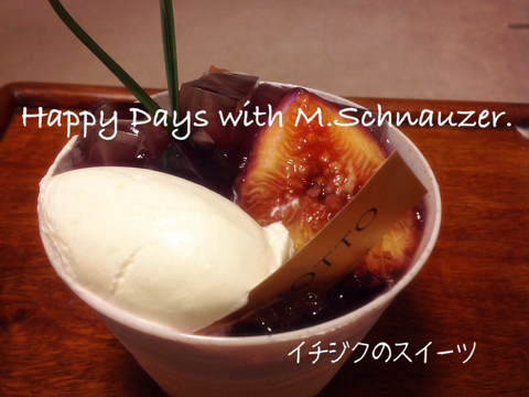 iphone/image-20140909193251.png